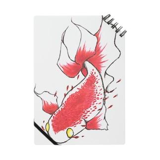 赤い魚 Notes