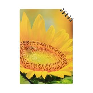 ひまわりとミツバチ ノート
