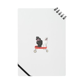 アンジー リリエン Notes