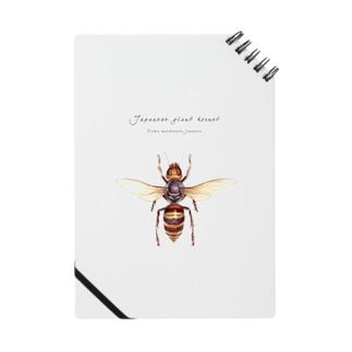 オオスズメバチ Notes