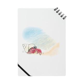 宿  カリ 君 Notes