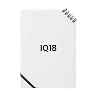 IQ18 LOGO  Notes