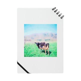 Mow Notes