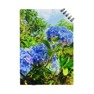 紫陽花ブルー Notes