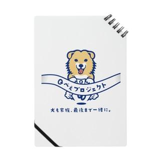 Qべぇプロジェクト Notes