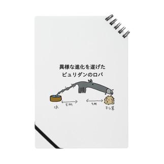 異様な進化 Notes