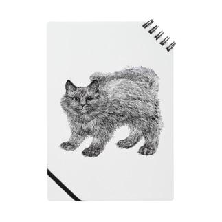 ふわふわの仔猫 Notes