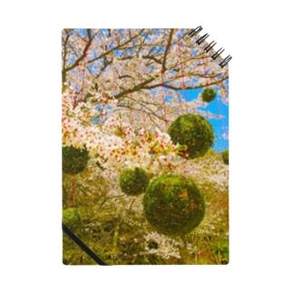 春の宴 Notes