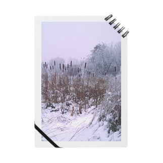 Winter Landscape, Cattail Notes