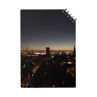 Copenhagen nightview Notes