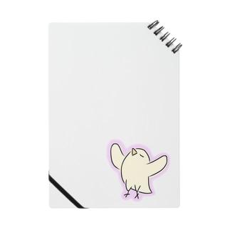 ナルシストり Notes