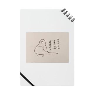 美声なインコのメルくん Notes
