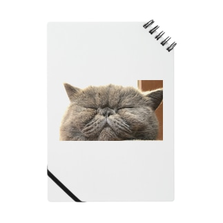 ramune Notebook
