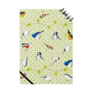 野鳥たち Notes