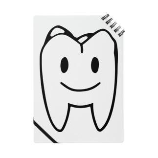 大臼歯くん Notes