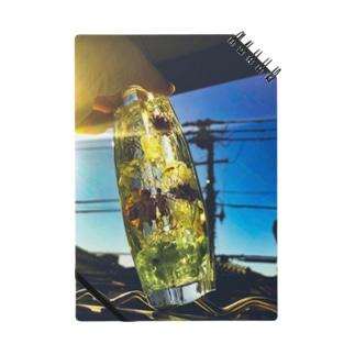 太陽キラキラハーバリウム Notes