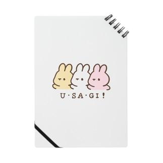 U・SA・GI! Notes