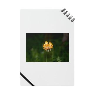 お花のノート #004 Notes
