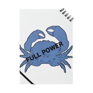 full power Notes