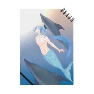 夏と飛沫 Notes
