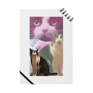 うちの猫 Notes