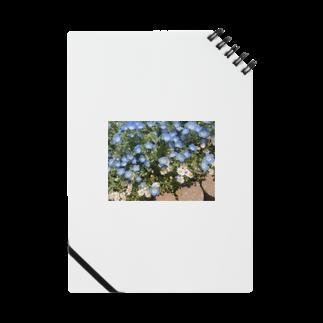 kanipanのネモフィラと白い花 Notes