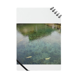 透明な池 Notes