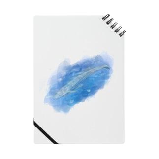 いきものイラスト(シロナガスクジラ) Notes