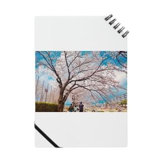 満開の春 Notes