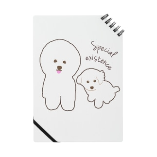 Bichon Frise Special existence Notes