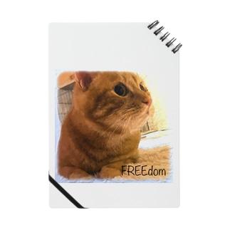 茶トラ猫 FREEdom Notes