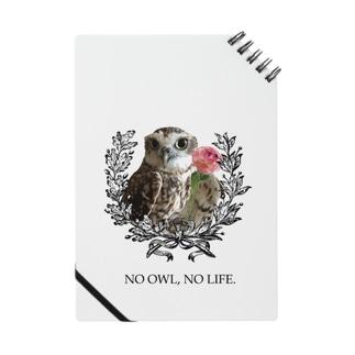 NO OWL, NO LIFE. Notes