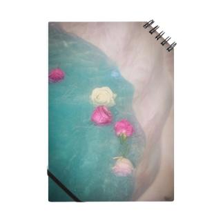 薔薇の貝殻 Notes