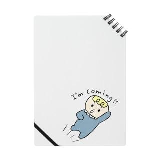 BeBe ~飛んでいく ~ Notes