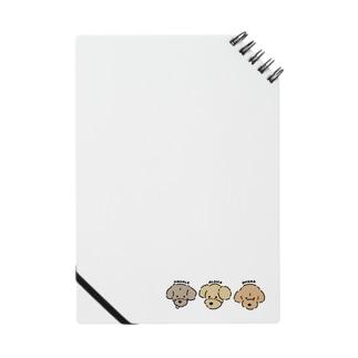 ALOHA / MAHALO / OHANA Notes