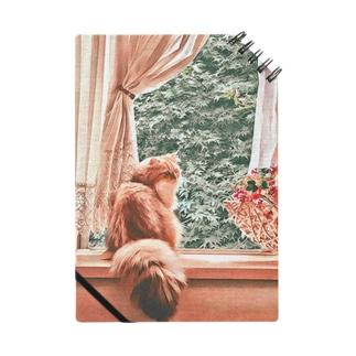 窓辺の猫こべびちゃん  Notes