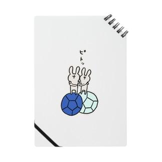 【ボッチャ】ジャックボールにピトッ Notes