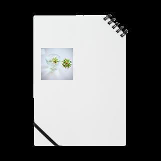 曖昧模糊なデザインショップの渇き Notes