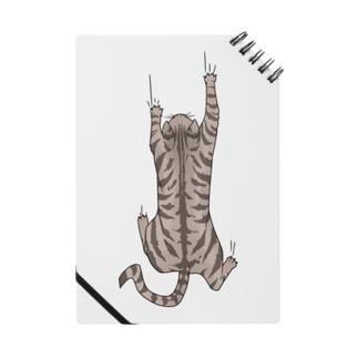 飛び付き猫 Notes