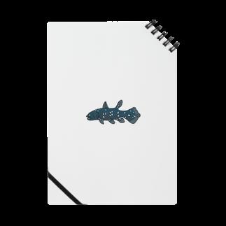 ki-yanのシーラカンス Notes