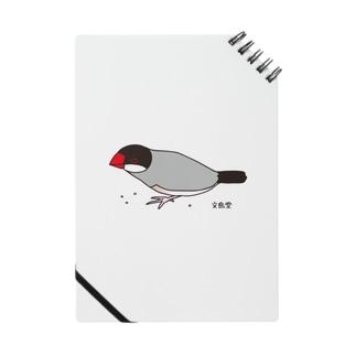 雑穀を食べる文鳥 ノート