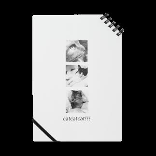 Ohaka。のcatcatcat‼︎‼︎ Notes