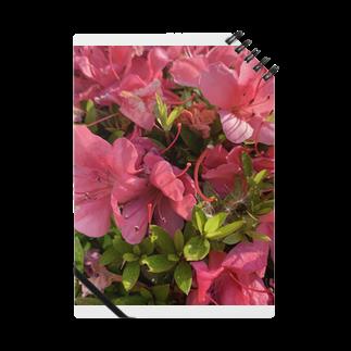 kokorokororokoの花花 Notes