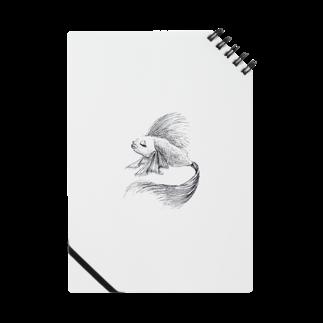 Unoの熱帯魚 Notes