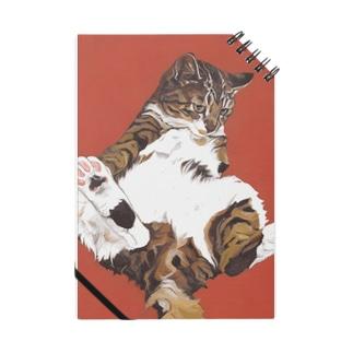 樽猫堂  安部円子の猫「ぐりこ1号」 Notebook