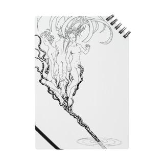 花筒 Notes