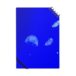 クラゲ Notes