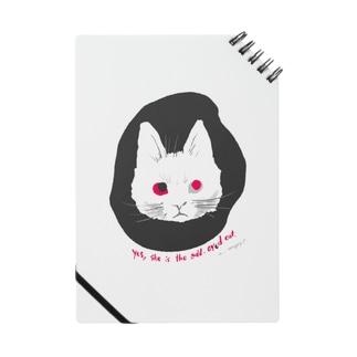 odd-eyed cat Notes