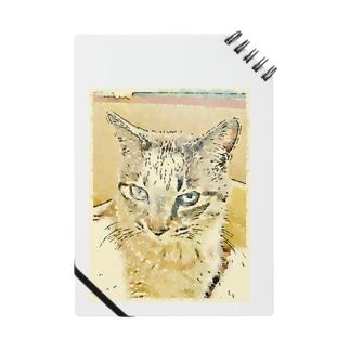 眠いトラ猫マーブル Notes
