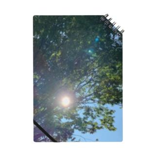 Earthhealingtreeの木と太陽 Notes